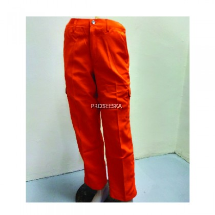 Pants Tecasafe Plus 700 Orange